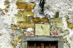 toscana_023-11x7.5-P1030032-copia